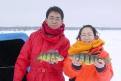 2.  Perch from Lake Simcoe, Ontario